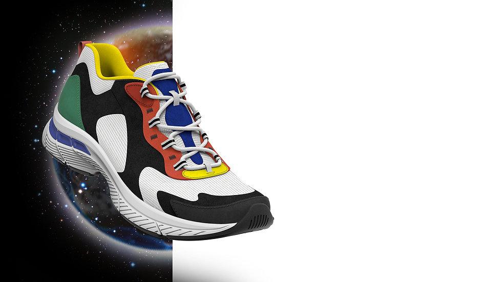 landing shoe.jpg