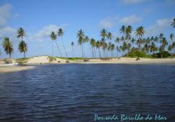 Maracajaú tem corais para mergulhar