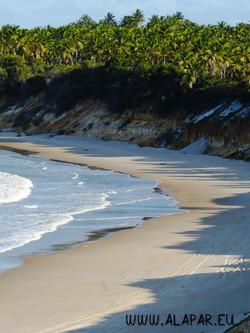 Bem pertinho de lá está a praia de tartarugas Ponta Gorda