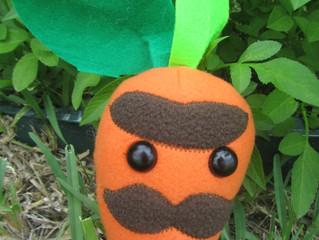 Meet Garret the Carrot!