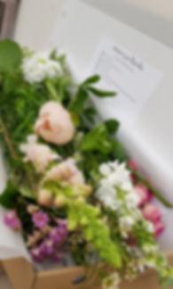 bloom box.jpg
