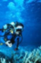 WetPC Underwater Computer.jpg