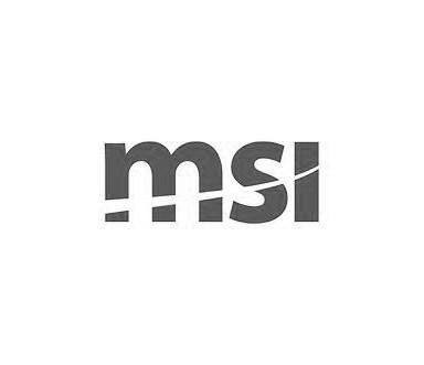 msi-Logo_Greyscale.jpg
