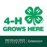 Michigan 4-H Youth Development