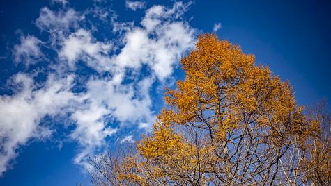 雲を払う  天女山 北杜 山梨