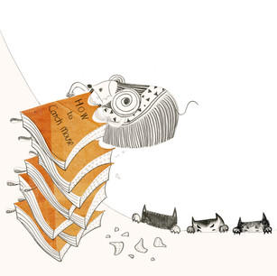 Eight books attract not only cat