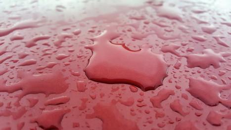 ISTOBAL car wash chemicals