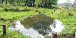 Water Collection Pond