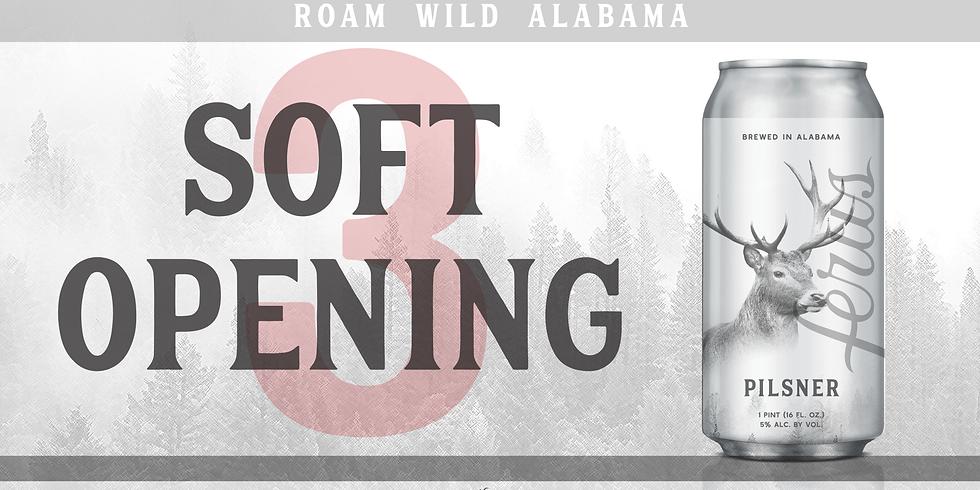 Soft Opening #3