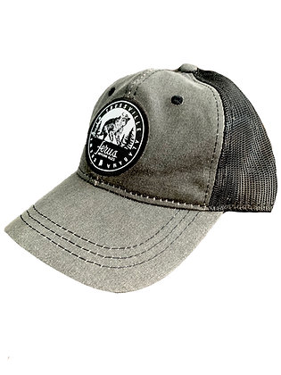 Brewed in Trussville Hat