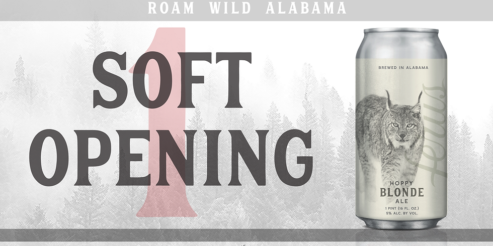 Soft Opening #1