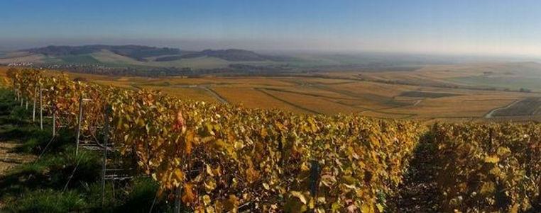 Gaston Chiquet champagne hos Vin og Venn