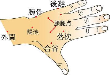 手の甲ツボ2.jpg