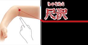 暑い・・のぼせる・・肺&粘膜強化には「尺沢」「曲池」