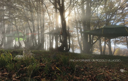 Tentsile TreeCamp-5