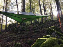 tree tent stingray  tentsile italia tenda da campeggio escursioni natura per 3 persone liberta tenda