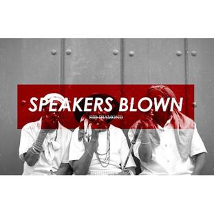SID DIAMOND // SPEAKERS BLOWN