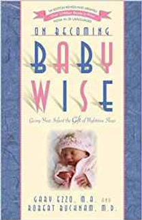On Becoming Babywise.jfif