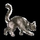 Acuarela del gato 2