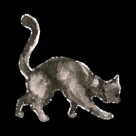 Watercolor Cat 2