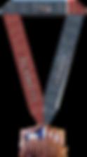 2020 Alamo medal and ribbon.png