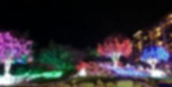 San Antonio's Original Night Time Half (Illuminatios Half/Stars At Night Half)