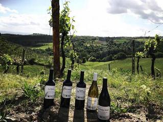 Tenuta Moriniello: una degustazione di vini toscani da 10 e lode