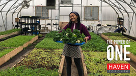 How A Self-Taught Toronto Farmer Is Tackling Inequality And Food Insecurity