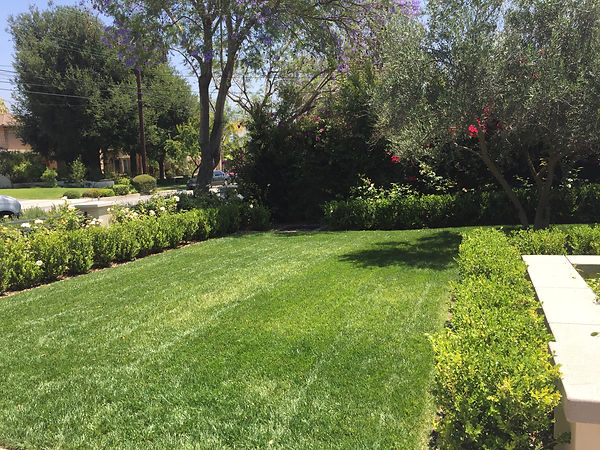 Lawn care in Arcadia