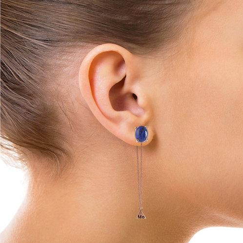 Fancy Pisces Earing