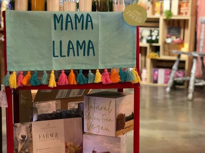 Mama Llama.JPG