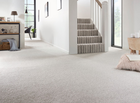 5 reasons why a clean carpet is essential
