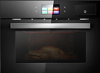Oven1_edited.png