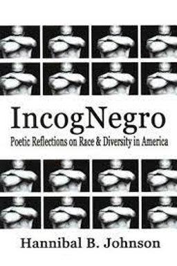 IncogNegro by Hannibal B. Johnson