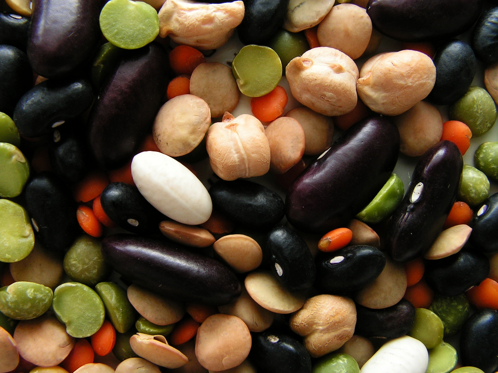 seeds free