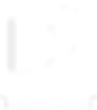 LOGO_D2I_WHITE (1).png