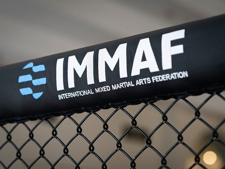 THE EVOLUTION OF THE MMA CAGE.
