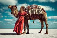 Greg Lotus Camel Orangey 9x12 100.jpg