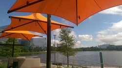 Del Frisco's Grille The Woodlands TX