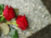 rozes-kapi-beres-seras-49276187.jpg