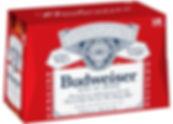 Budweiser 18 pack bottles.jpg
