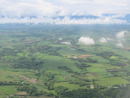 Understanding effects of landscape fragmentation on functional diversity