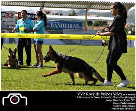 Roxy de Vulpos Velox