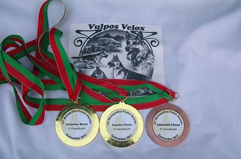Medalhas PACP