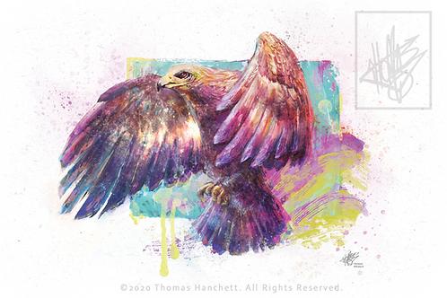 """Eagle Postcard Matte (6x4"""")"""
