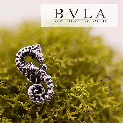 BVLA Sea Horse
