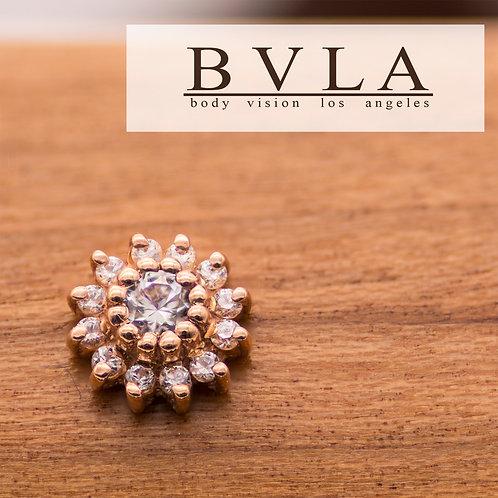 BVLA Rose