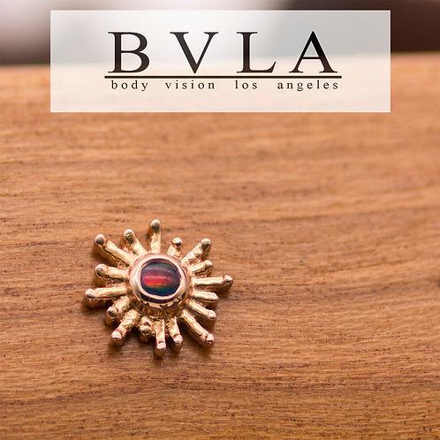 BVLA Sunray