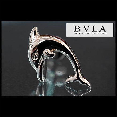 BVLA Dolphin