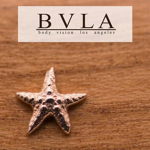 BVLA Starfish